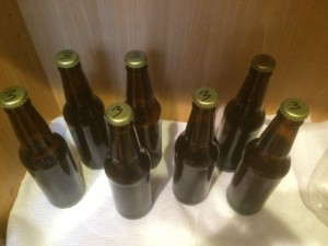 Beer #3 – 1 gallon IPA