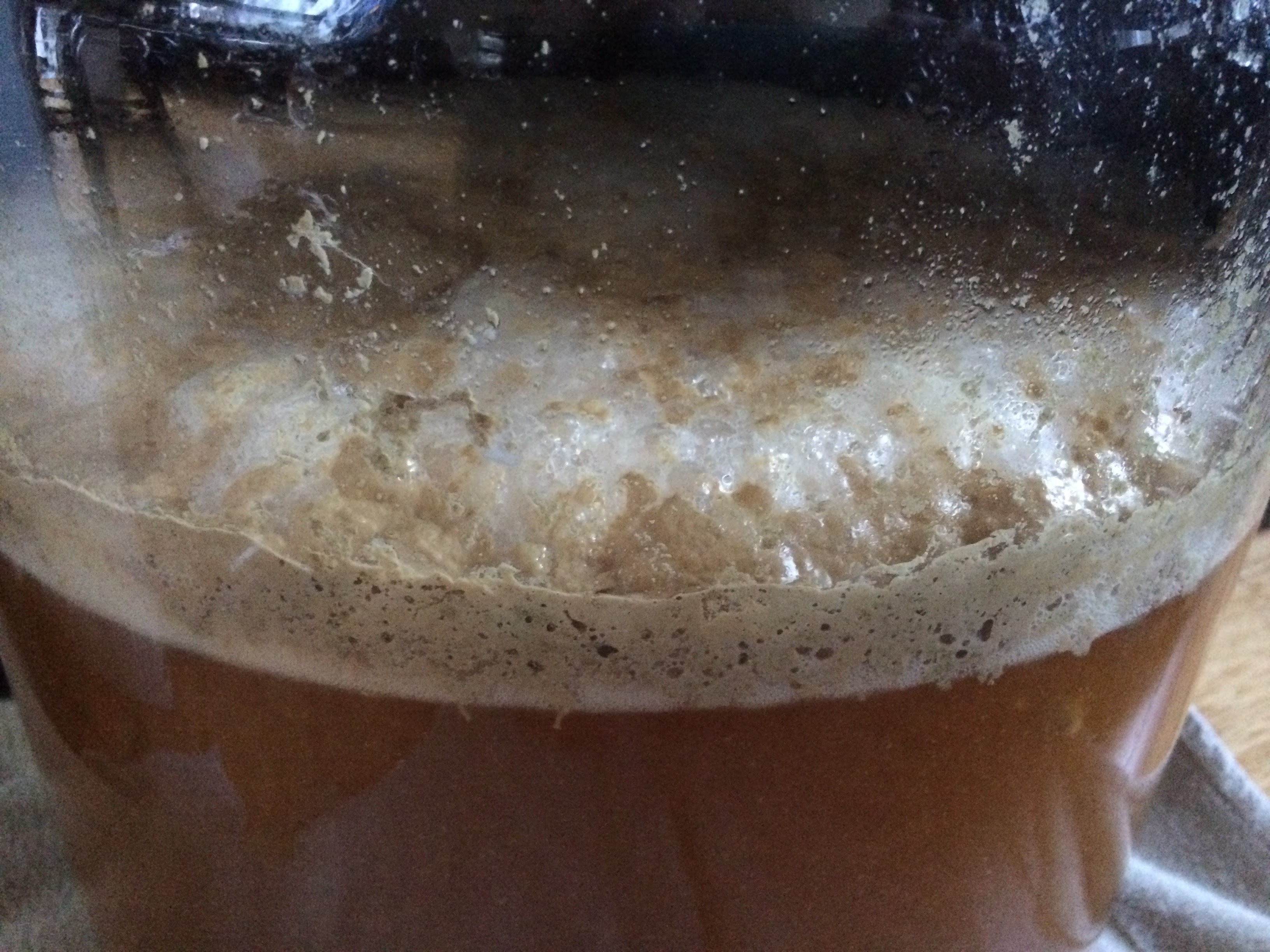 Brew #6 – IPA